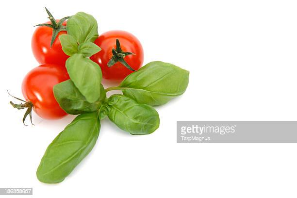 3 cherry tomatoes and basil together on white background