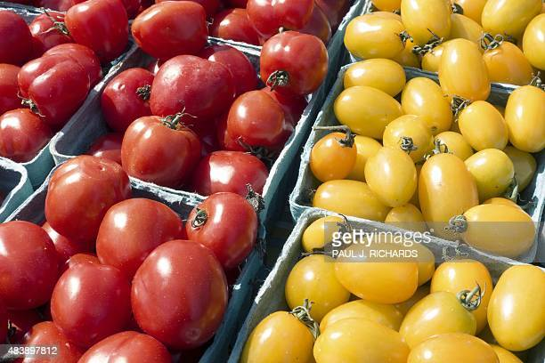 Cherry tomatoes are seen at a Farmer's Market where locally grown produce is sold August 13 2015 in Fairfax Virginia AFP PHOTO/PAUL J RICHARDS