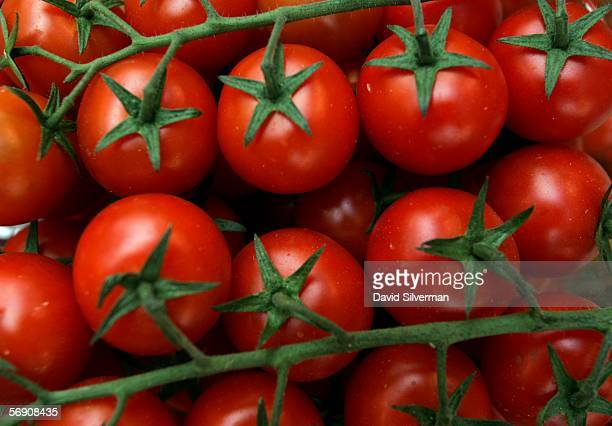 Cherry tomatoes on display in the local produce market February 22 2006 in Netanya in central Israel Tomatoes are a major source of antioxidants and...