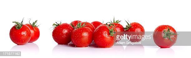 cherry tomatos (XXXL