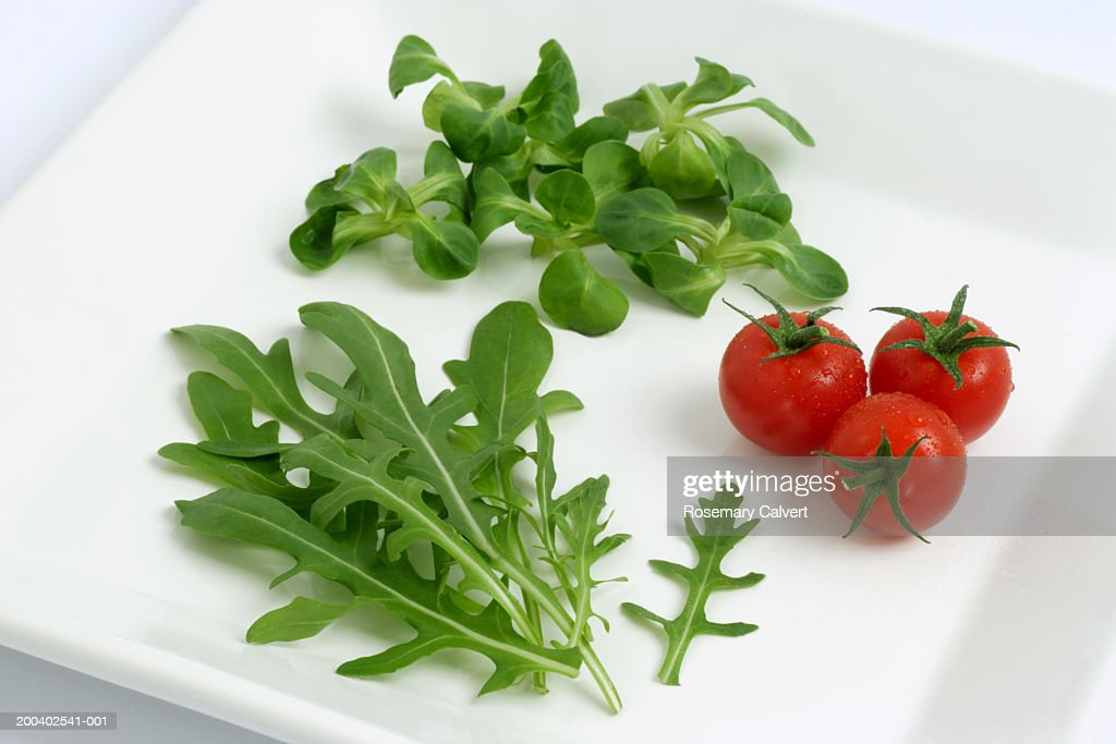 Cherry tomatos, rocket and lamb's leaf lettuce leaves on plate : Stock Photo