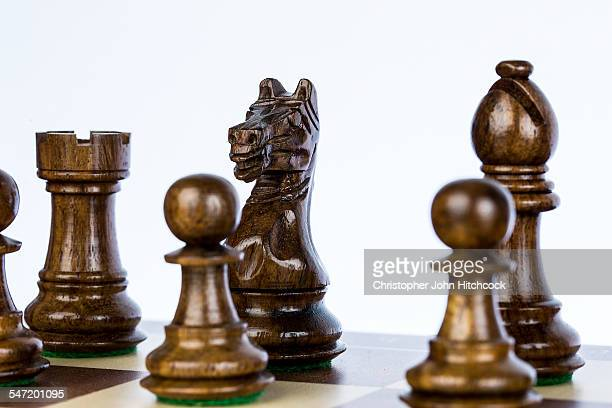 Chess pieces lined up on the board, with the focus on the knight.