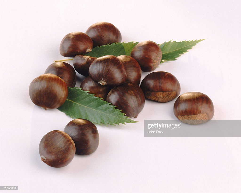 Chestnut with leaves on white background, close-up : Stock Photo