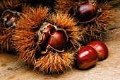 Chestnuts in their spiky shells