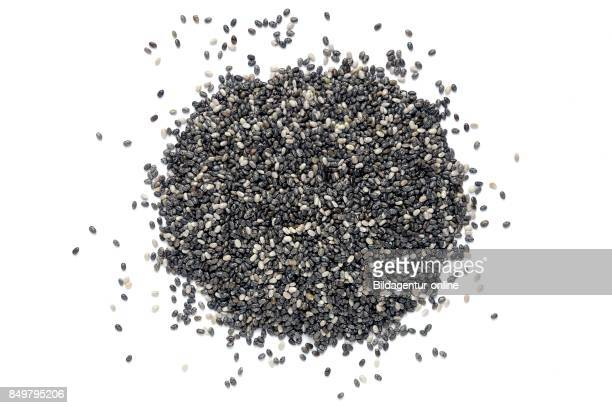 Chia Seed is Obtained From Salvia Hispanica of The Lamiaceae Family Food