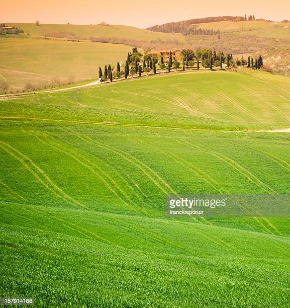 Chianti Region hills at sunset in Tuscany - Italy
