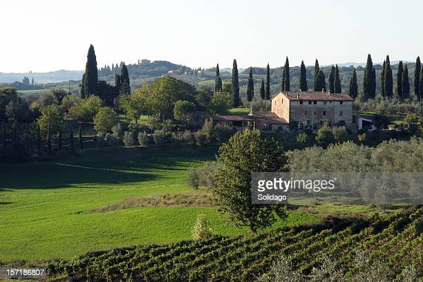 Chianti, Tuscany Italy North East of Siena