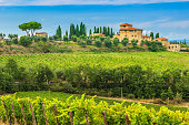Typical Tuscany stone house with stunning vineyard in the Chianti region,Tuscany,Italy,Europe