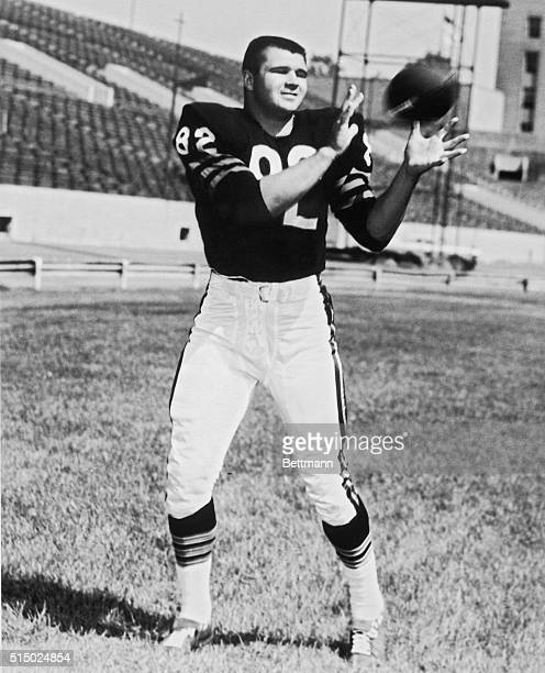 Chicago Bears' Tight End Mike Ditka shown full length catching football
