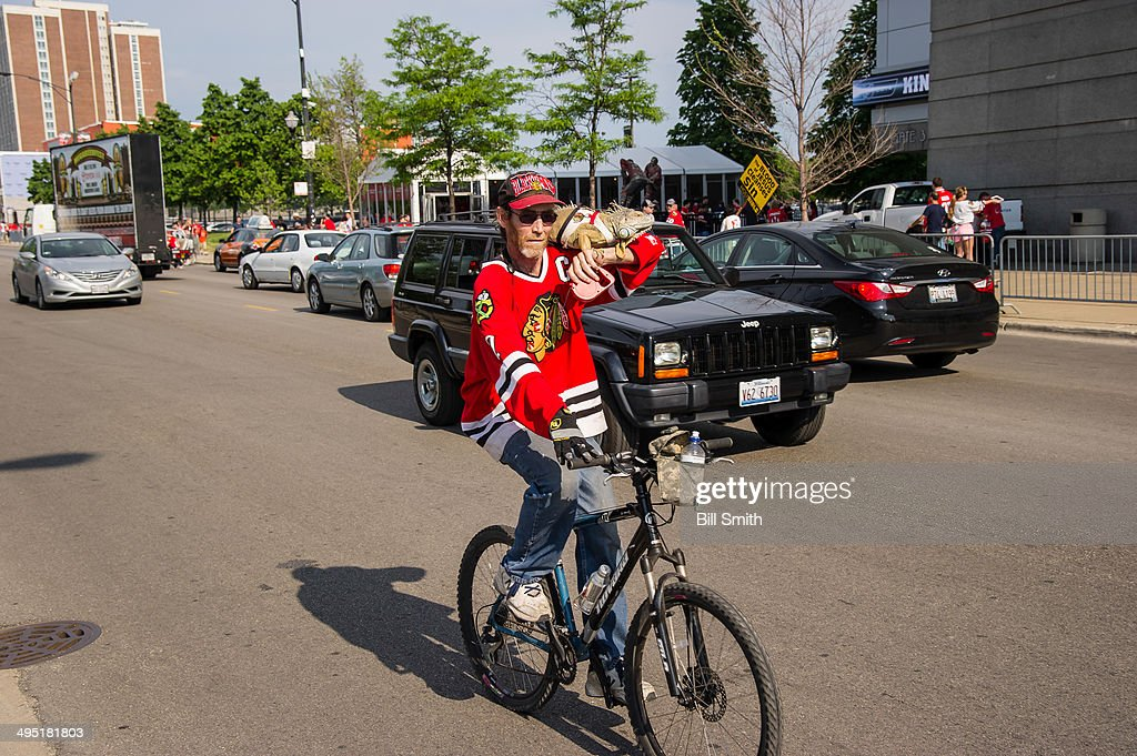 A Chicago Blackhawks fan rides to the United Center with his pet iguana prior to Game Seven of the Western Conference Final against the Los Angeles Kings during the 2014 NHL Stanley Cup Playoffs on June 01, 2014 in Chicago, Illinois.