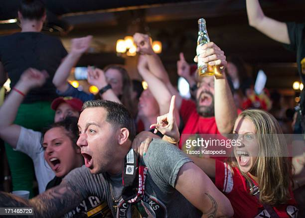 Chicago Blackhawks fans celebrate after defeating the Boston Bruins to win the Stanley Cup on June 24 2013 in Chicago Illinois
