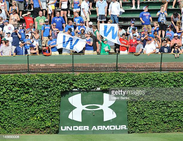 Chicago Cubs fans celebrate the victory over the San Diego Padres on May 28 2012 at Wrigley Field in Chicago Illinois