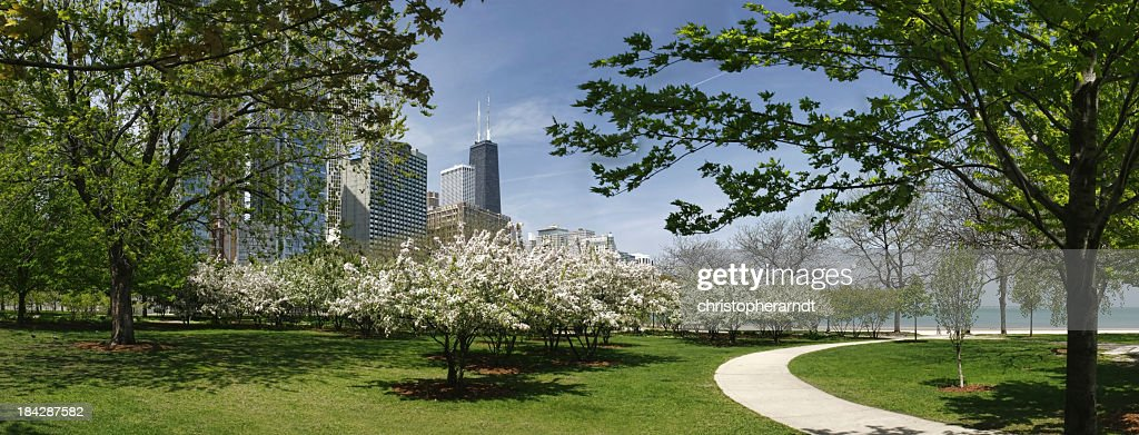 Chicago park and John Hancock building in spring : Stock Photo