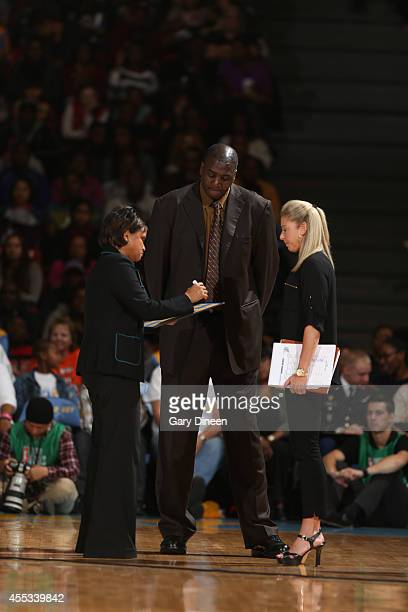 Chicago Sky head coach Pokey Chatman diagrams a play in Game Three of the 2014 WNBA Finals on September 12 2014 at the UIC Pavilion in Chicago...