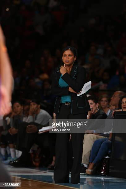 Chicago Sky head coach Pokey Chatman looks on in Game Three of the 2014 WNBA Finals on September 12 2014 at the UIC Pavilion in Chicago Illinois NOTE...