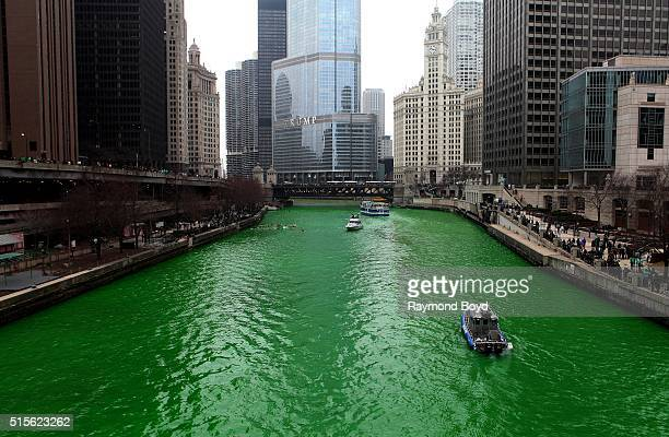 Chicagoans lined along Upper and Lower Wacker Drive and the Riverwalk after members of Plumbers Local 130 UA poured environmentally safe orange...