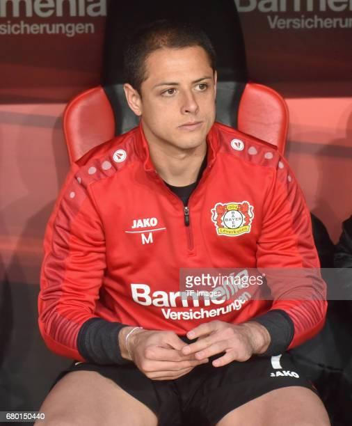 Chicharito of Leverkusen looks on during to the Bundesliga match between Bayer 04 Leverkusen and FC Schalke 04 at BayArena on April 28 2017 in...