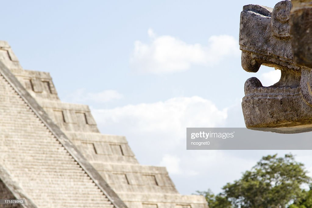 Jaguar looking at ancient pyramid  chichen itza