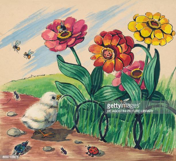 A chick and a flower bed children's illustration drawing