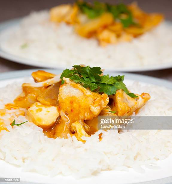 Chicken curry on rice with garnish