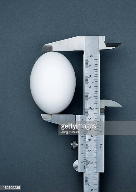Chicken egg in vernier caliper
