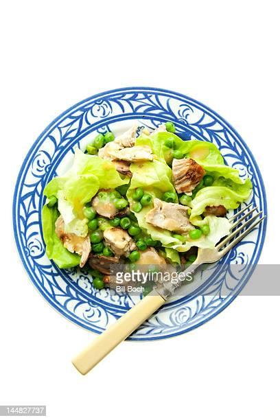 Chicken salad on white background