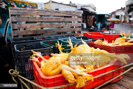 Chickens for sale at Mexican party. : Stock-Foto