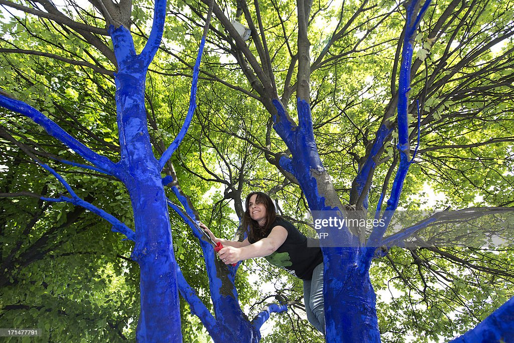 Chief Executive of Trees for Cities, Sharon Johnson, paints branches of an environmental art installation called 'Blue Trees in London', which aims to highlight the importance of urban trees, close to Saint Paul's Cathedral in London on June 25, 2013.