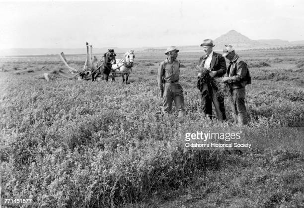 Chief of Soil Conservation Service Doctor H H Bennett discussing alfalfa seed harvesting with O W Tucker on his farm in Cimmaron County northwest of...