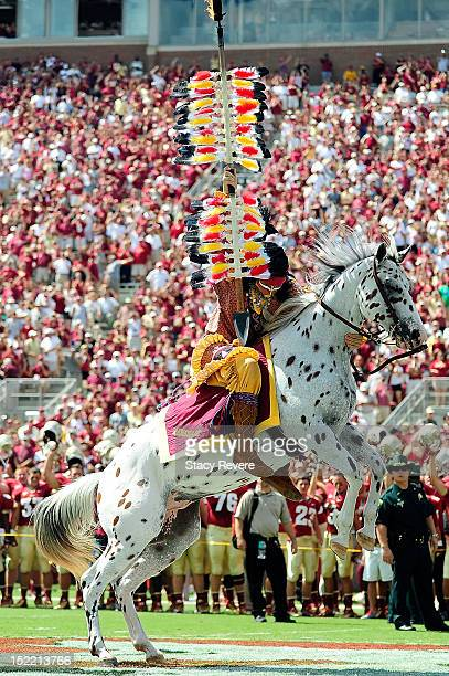 Chief Osceola mascot of the Florida State Seminoles plants a spear at midfield prior to a game against the Wake Forest Demon Deacons at Doak Campbell...