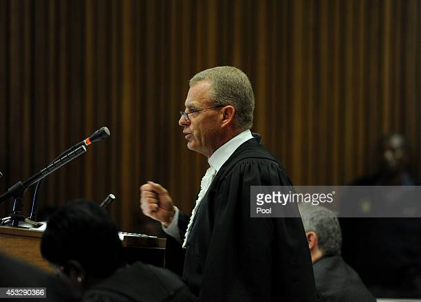 Chief prosecutor Gerrie Nel during the final arguments in the murder trial of Oscar Pistorius in the Pretoria High Court on August 7 in Pretoria...