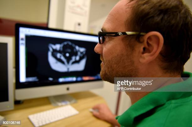 Chief veterinary clinic Baptiste Mulot looks at a scanner displayed on a computer screen at the veterinary clinic at the Zooparc of Beauval on June...