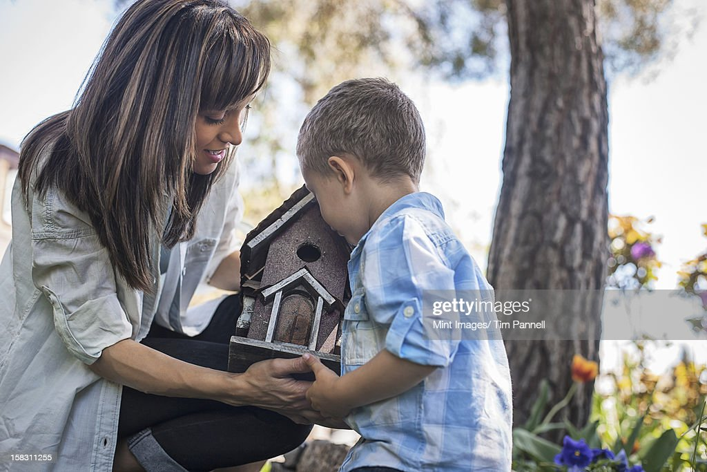 A child and adult looking at a bug box. : Stock Photo