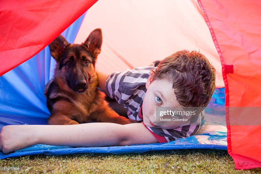 Child and pet dog inside a camping tent : Stock Photo