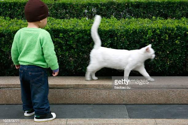 Child and white cat