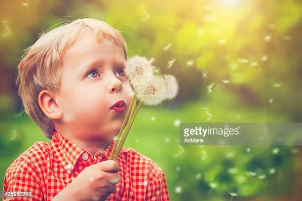 Enfants de souffler Fleur de pissenlit
