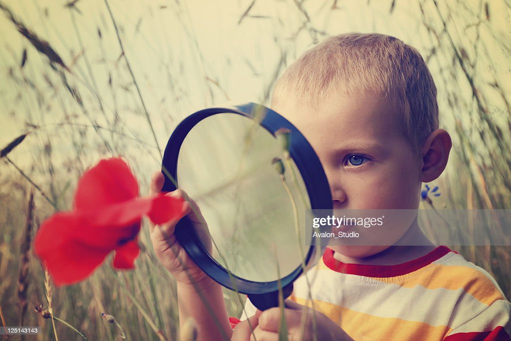 Child boy and magnifying glass : Stock Photo