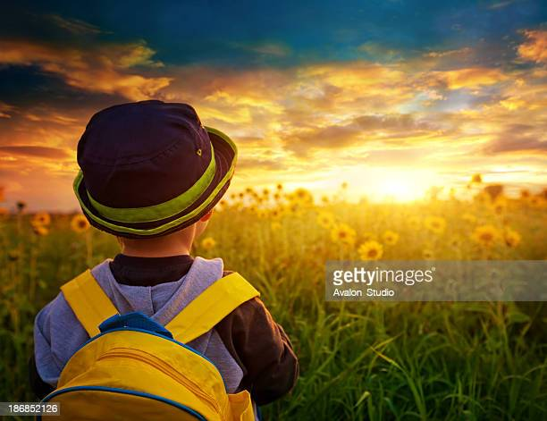 Child boy with a backpack on a sunflowers