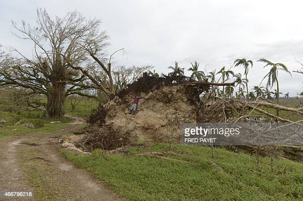 A child climbs on a block of earth under a uprooted tree near Port Vila on March 19 2015 after Severe Tropical Cyclone Pam hit the Pacific nation of...