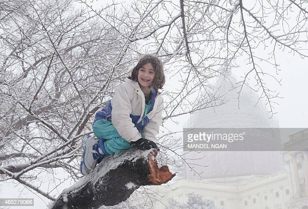 A child climbs on a snowcovered tree on the West Lawn of the US Capitol on March 5 2015 in Washington DC AFP PHOTO/MANDEL NGAN