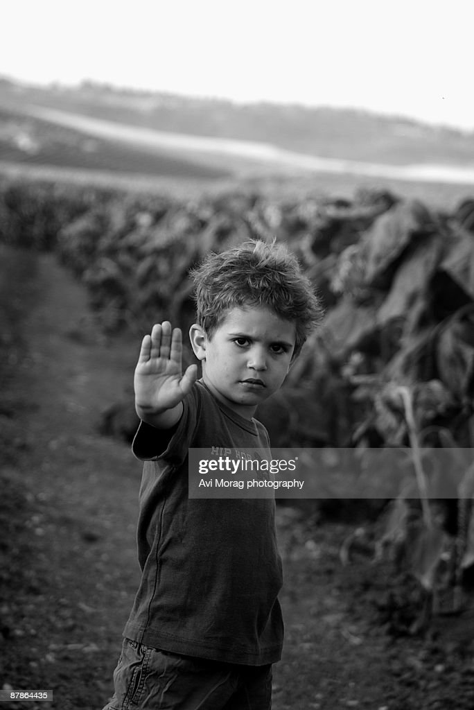 Child denying access to sunflower field : Foto de stock