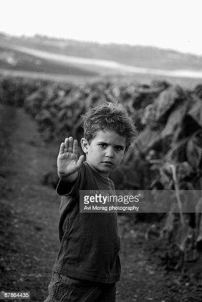 Child denying access to sunflower field