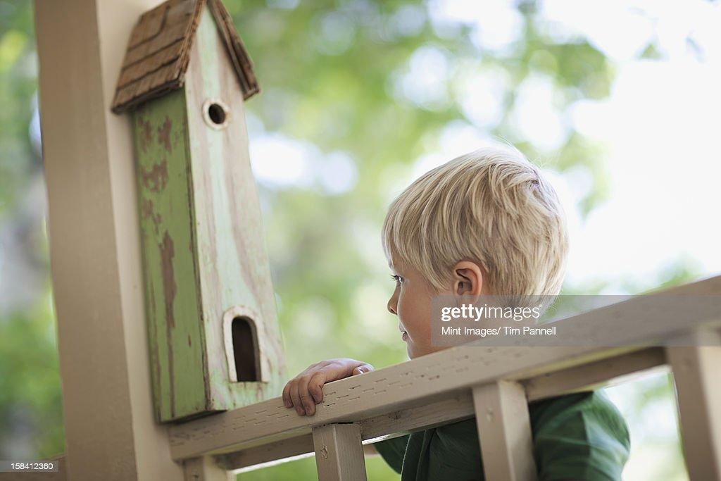 A child examining a bug box on a porch. : Stock Photo