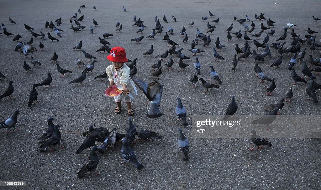 A child feeds pigeons at dawn on New Year's Day at Yangon jetty on January 1, 2013. An estimated 50,000 flocked to Yangon's revered golden Shwedagon Pagoda for the city's first public New Year countdown and fireworks display, seen as further evidence of opening up after decades of military rule. AFP PHOTO / Ye Aung Thu