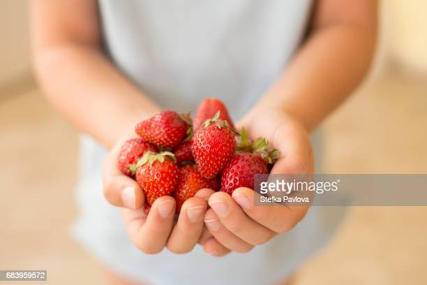 A child holding a handful of strawberries, close-up