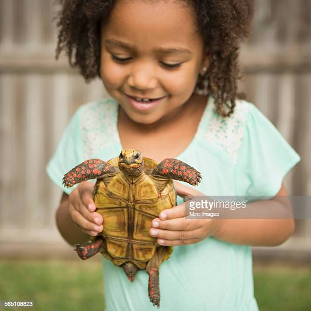 A child holding a tortoise.
