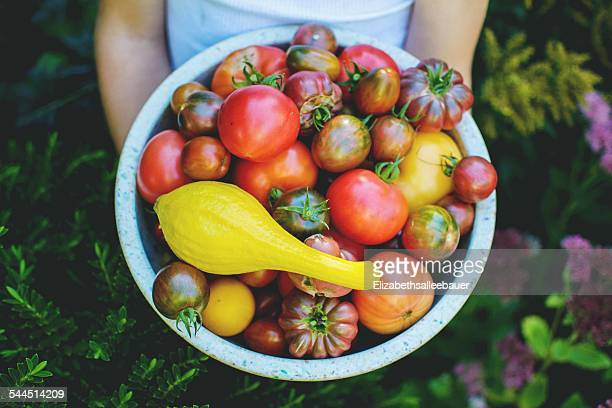 Child (4-5) holding bowl of garden tomatoes