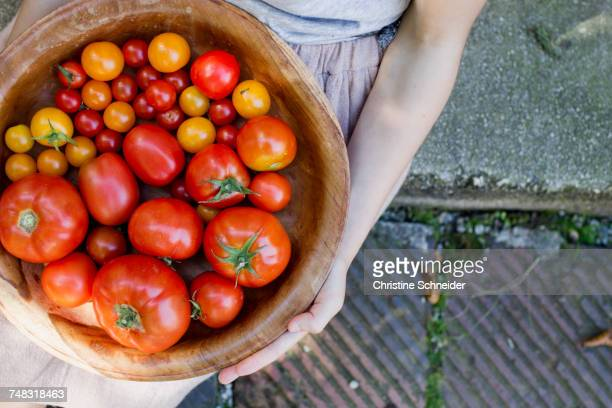 Child holding bowl of tomatoes