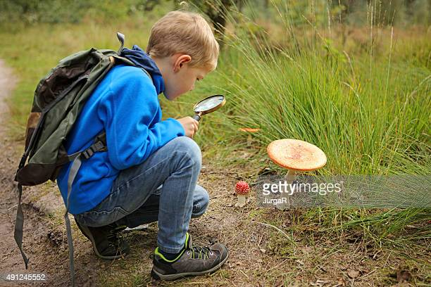 Child Holding Magnifying Glass Discovering Nature in The Forest