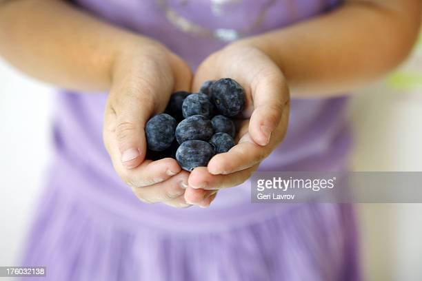 Child holding organic blueberries in her hands